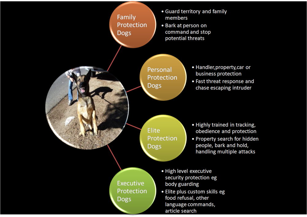 Personal Protection Dogs Chart
