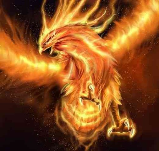 Towards the end of its life, said to be 500-1000 years, the Phoenix ...