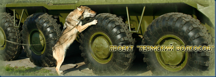 Russian Wolf Dog detecting explosives