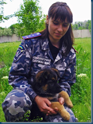 Federal Border Guards - Russian Military Dogs bred to defend borders. (4/6)