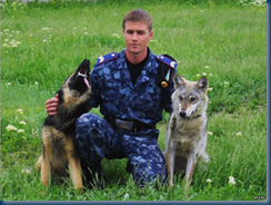 Federal Border Guards - Russian Military Dogs bred to defend borders. (6/6)