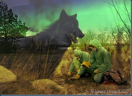 GlovedScientists_Radioactive_WolfResearch_ChernobylExclusionZone