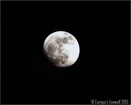 The Night Before Full Moon_6 April 2013