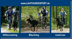Laufhundesport_Credit www.canicross.at