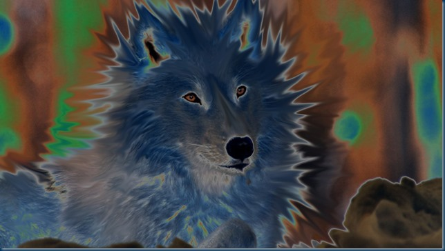 """Solarised, Black Wolf of Mars Wolfie Herr Selfie"""