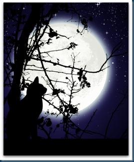 The_Cat_and_the_Moon_by_hiddenmuse2