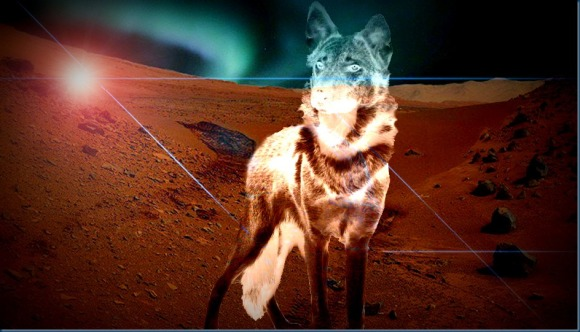 Mars blue aurora wolf_Image credits (background): NASA/JPL-Caltech/MSSS and CSW/DB.