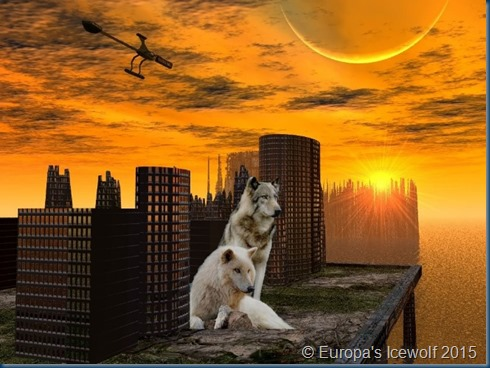 Wolves_Abandoned Rooftops